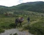 Cabalgatas por el Sector, Región de Aysén, Patagonia Chilena